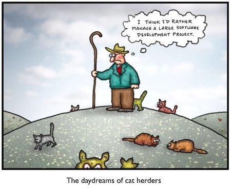 The cat herder's daydream